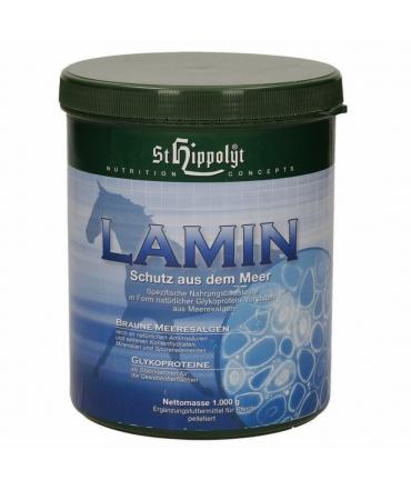 complément chevaux lamin st hippolyte