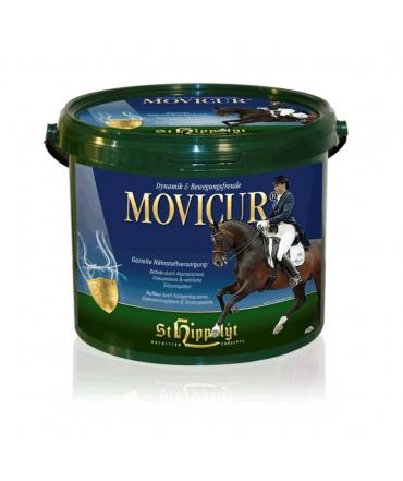 complément chevaux articulations movicur st hippolyt