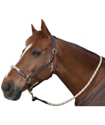 licol en corde et cuir cheval chetak beige marron