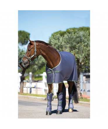 chemise cheval horseware amigo jersey cooler