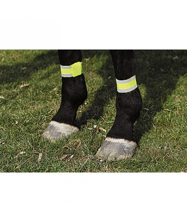 bandages réfléchissant fluo jaune cheval
